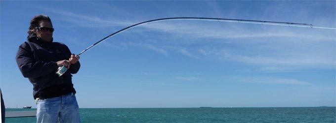 Hardy Proaxis-X 1-piece Rod