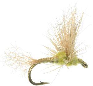 Sparkle Dun Dry Fly