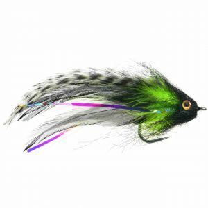 Jungle Love Fly