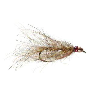 Ruby Eyed Leech Fly